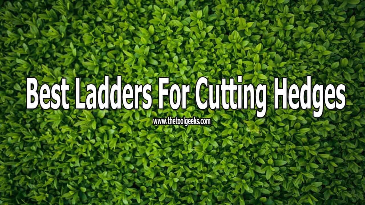 If you have a garden then you surely have hedges. While time passes by these hedges start to grow. You have to cut them entirely or trim them. Regardless of the choice, you need a ladder. There are a lot of ladders available. But, I suggest you check our best ladders for cutting hedges list.