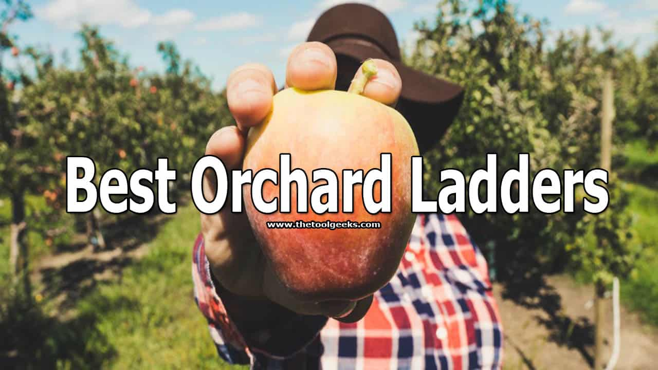 You have different fruit in your orchard. When it's time to pick them up, you need to use a ladder. The ground on orchards is soft so you need stable ladders that won't shake easily. If you are looking for orchard ladders then make sure to check the list that we made about the best orchard ladders. We included 5 different ladders and reviewed them.