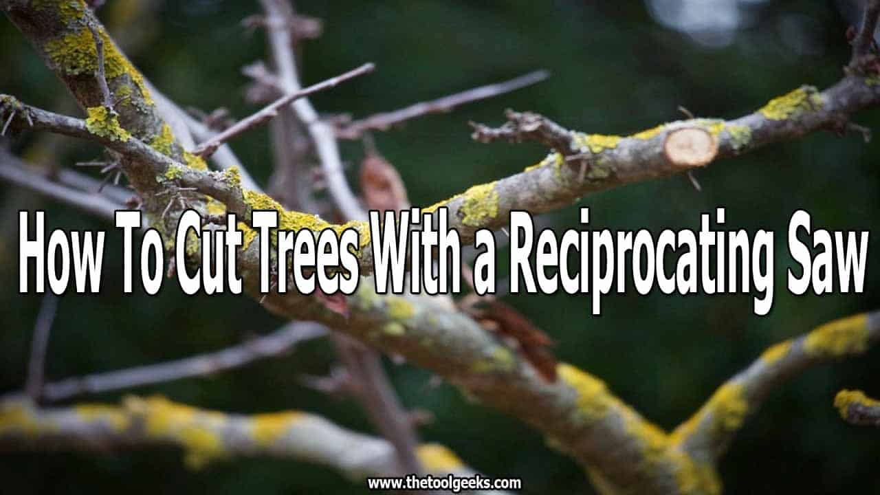 Sometimes you have to cut down your trees, and the only tool that you have around is a reciprocating saw. That's why knowing how to cut trees with a reciprocating saw is needed. Reciprocating saws are easy to cut and very effective when it comes to tree pruning.
